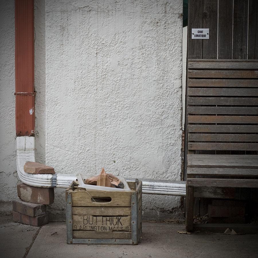 20090312_1752 buttrick chat lunatique 900px 150dpi