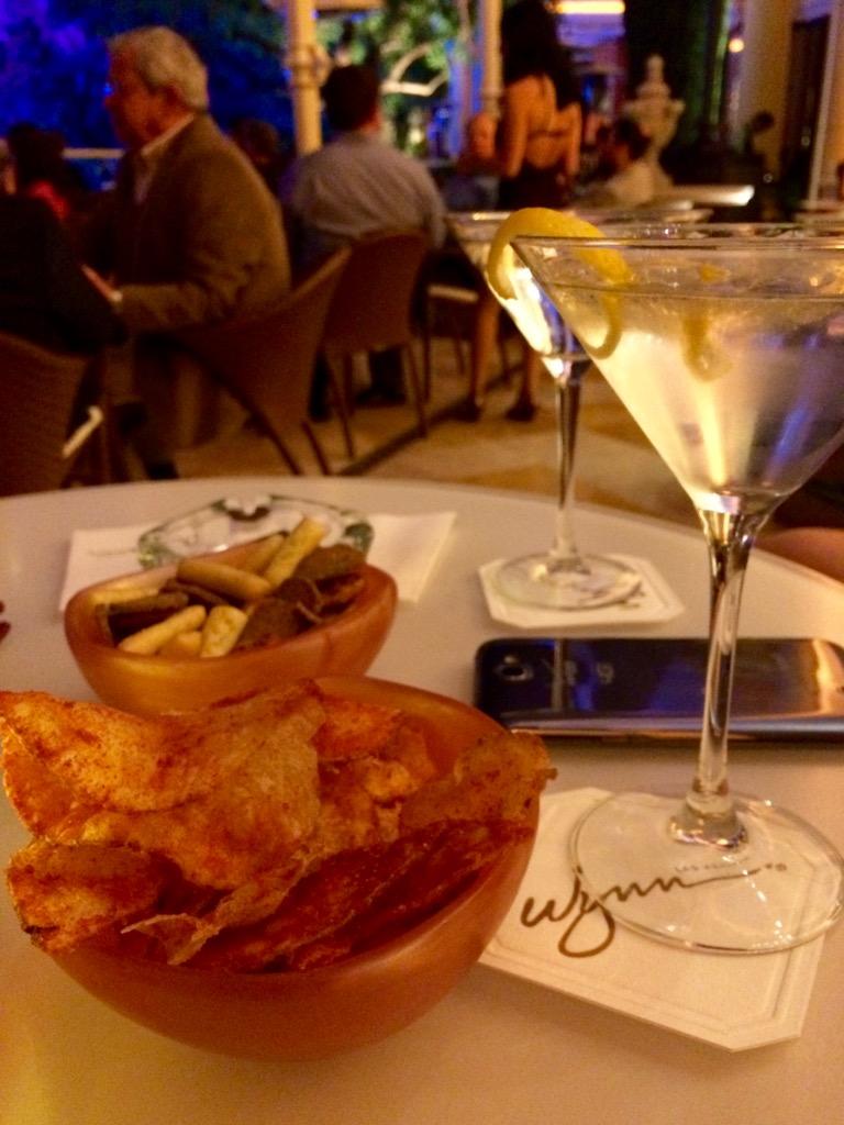 Wynn Las Vegas Parasol Down Bar Lake Of Dreams 1 Imitation Of Mink